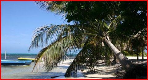 Long Caye Beach